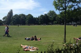 Holland Park has a huge variety of spaces for walks, games and even some sunbathing near Olympia.