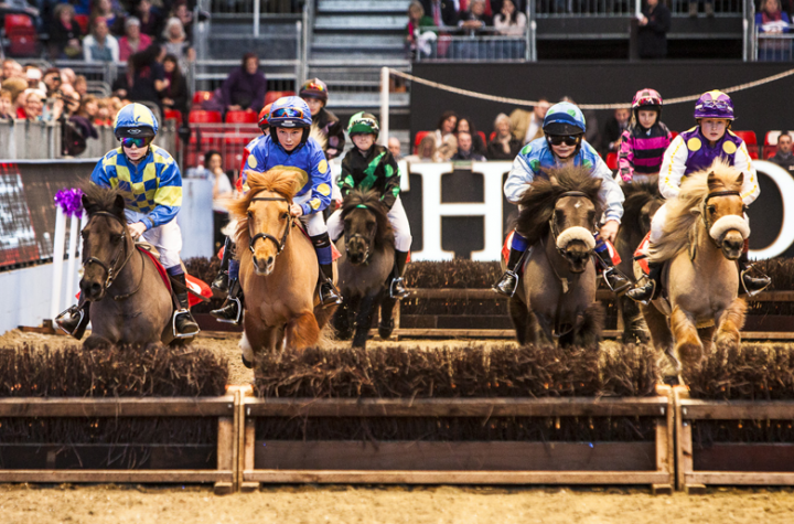 Taking place at Olympia Grand, witness high-class competitions in Dressage, Show Jumping and Driving at Olympia, The London International Horse Show.