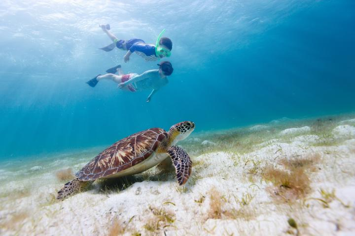 The Family Travel Show launches Young Travel Photographers Competition